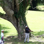 lascuna under the tree in hole 15