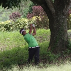 1.mondilla hole 9 under the tree rought